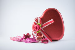 Rode Liefde met droge bloemen Stock Foto