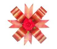 Rode lintboog met rode die bloem op wit wordt geïsoleerd Royalty-vrije Stock Foto's