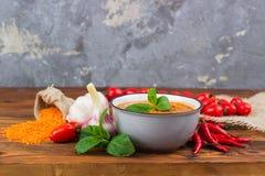 Rode linzesoep met ingrediënten stock foto's