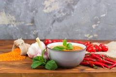 Rode linzesoep met ingrediënten stock afbeelding