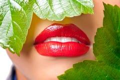 Rode lippen Stock Afbeelding