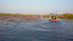 Rode Lotus Marine stock afbeeldingen