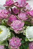 Rode lotusbloem. Royalty-vrije Stock Afbeelding