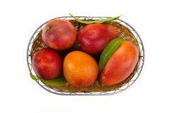 Rode mango Royalty-vrije Stock Foto