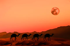 Rode Mars Stock Afbeelding