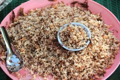 Rode mier, miereneieren en mier larvaes voor verkoop om Thai-stijldi te koken royalty-vrije stock foto's