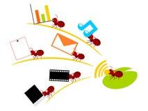 Rode mieren draadloze lan groepswerkillustratie Stock Afbeeldingen