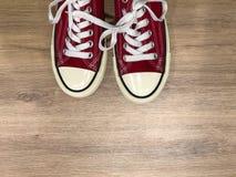 Rode moderne tennisschoenen stock foto
