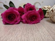 Rode mooie Rozen royalty-vrije stock fotografie