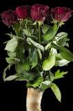 Rode mooie rozen in de zwarte leegte stock afbeelding