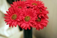 Rode mum Stock Afbeelding