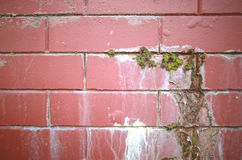 Rode Muur Stock Foto's