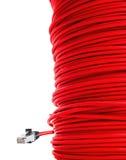 Rode netwerkkabel Stock Afbeelding