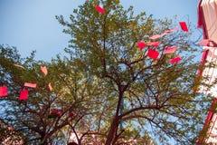 Rode nota's over een boom, een verfraaide boom in rood royalty-vrije stock fotografie