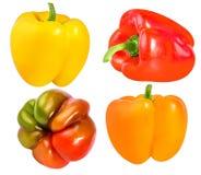 Rode, oranje en gele die groene paprika's op wit worden geïsoleerd Royalty-vrije Stock Afbeeldingen