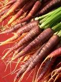 Rode, oranje en purpere wortelen Stock Foto's