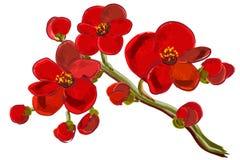 Rode orchideebrunch Stock Foto
