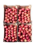 Rode organische appelen in vier die kartondozen op witte B worden geïsoleerd royalty-vrije stock fotografie