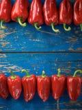Rode organische peper royalty-vrije stock foto