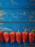 Rode organische peper stock foto