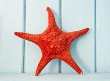 Rode overzeese ster Royalty-vrije Stock Afbeeldingen