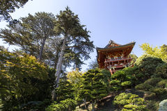 Rode pagode en bomen in een Japanse tuin Royalty-vrije Stock Foto's