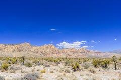 Rode panoramische Rotscanion, Mojave-Woestijn, Nevada, de V.S. Stock Foto's