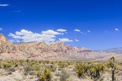Rode panoramische Rotscanion, Mojave-Woestijn, Nevada, de V.S. Royalty-vrije Stock Foto's