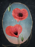 Rode papavers - hart royalty-vrije illustratie