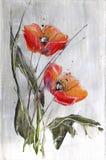 Rode papavers op grijs Royalty-vrije Stock Afbeeldingen