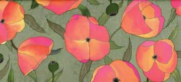 rode papavers op groene achtergrond Royalty-vrije Stock Afbeeldingen