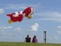 Rode Papegaai en toeschouwers bij vlieger-festival wyk Stock Fotografie