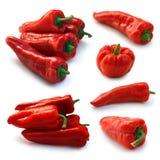Rode paprika Royalty-vrije Stock Foto