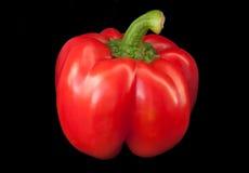 Rode paprika Stock Afbeeldingen