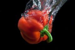 Rode paprika. Royalty-vrije Stock Foto's