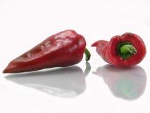 Rode paprika twee Royalty-vrije Stock Foto's