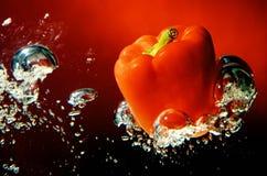 Rode paprika in water, zoete paprika Stock Afbeeldingen