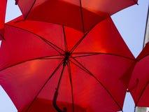 Rode Paraplu stock foto's