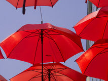 Rode Paraplu stock fotografie