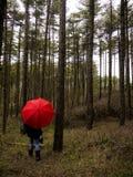 Rode Paraplu in het Hout Royalty-vrije Stock Fotografie