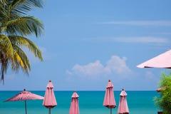 Rode Paraplu's Royalty-vrije Stock Foto