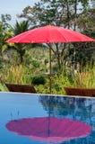 Rode paraplubezinning in pool Stock Afbeeldingen