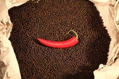 Rode pepperonis op zwarte peper Stock Foto