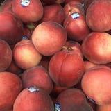 Rode perzik Stock Afbeeldingen