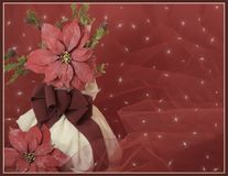 rode poinsettia en tak op een witte vaasachtergrond Christmascard Royalty-vrije Stock Foto's