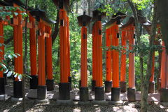 Rode poortentunnel in Kyoto Royalty-vrije Stock Foto