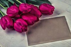Rode Purpere Tulpen Uitstekende Kaart Royalty-vrije Stock Foto's