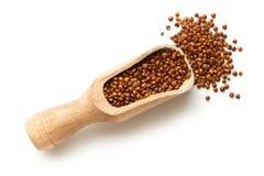 Rode Quinoa zaden royalty-vrije stock afbeelding