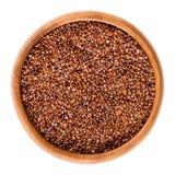 Rode quinoa zaden in houten kom over wit Stock Foto's