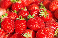 Rode rijpe aardbeien Stock Foto's